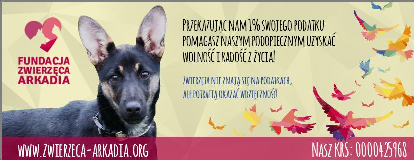 Przekaż 1% podatku zwierzętom!